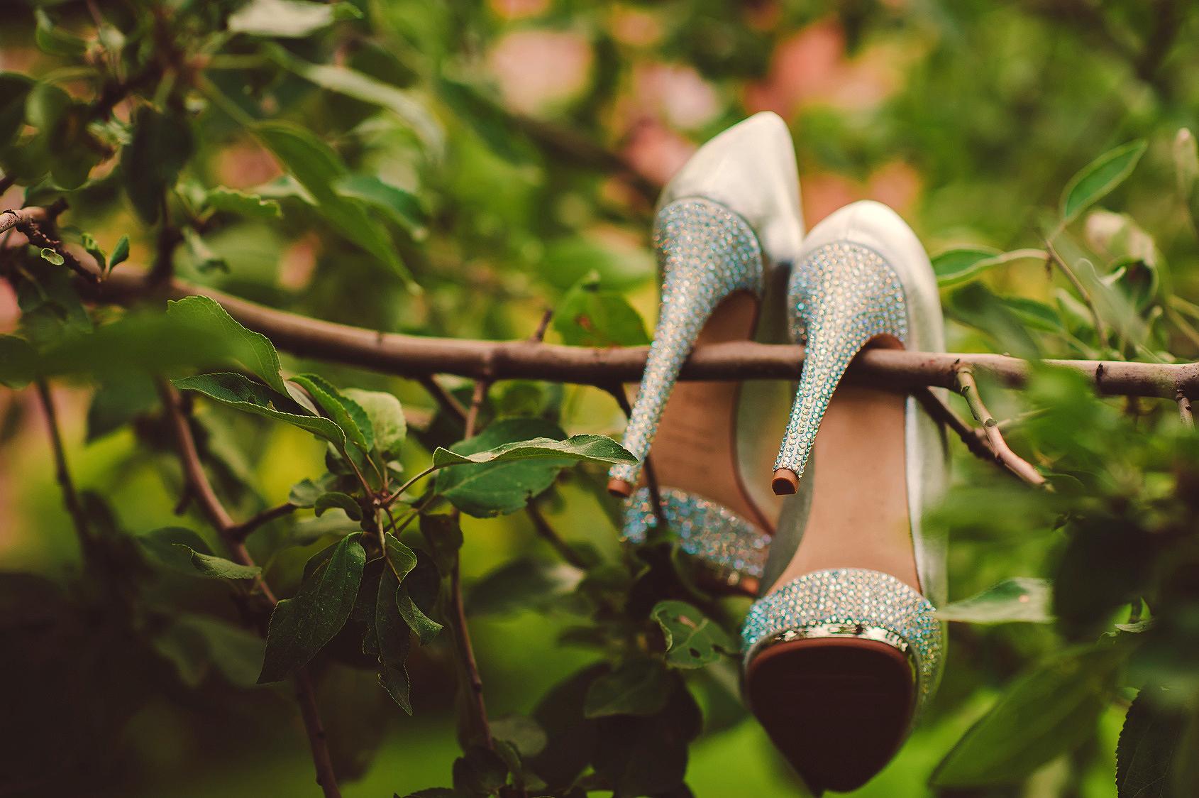 zapatos-de-novia-en-arbol